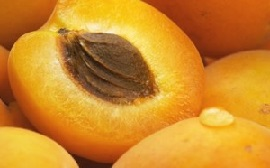 Сочный плод абрикоса.