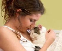 Как кошки лечат?