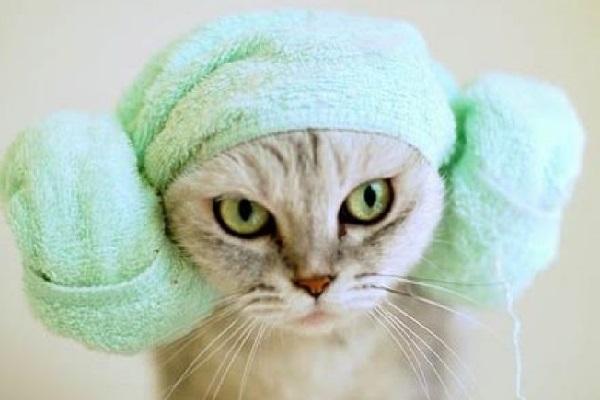 После принятия ванны