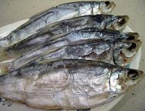 Как сушить рыбу в домашних условиях?