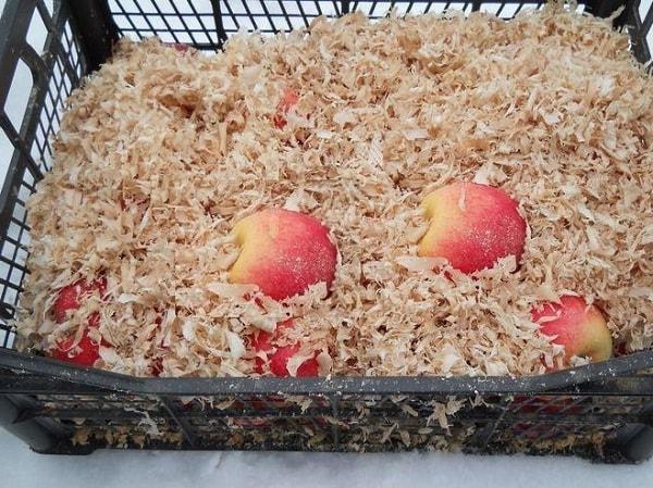 Сохраняем яблоки в опилках