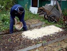 Опилки для огорода польза и вред. Применение