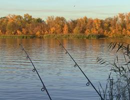 Осенняя рыбалка на карпа