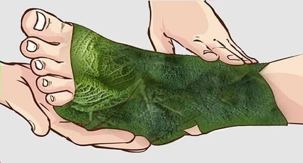 Компресс при болях в суставе из капустного листа