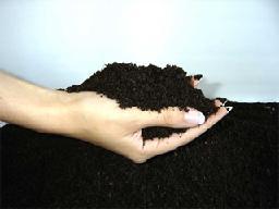 Плодородная почва.