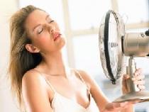 Вентилятор хороший помощник при жаре.