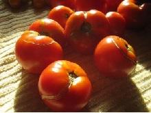Треснутые помидоры.
