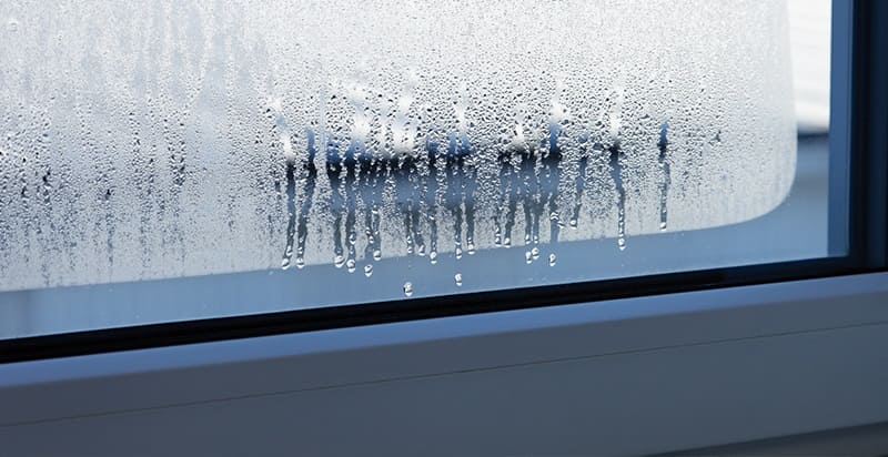 Что сделать, чтобы пластиковые окна не плакали?