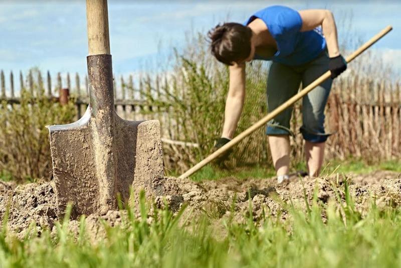 Как работать на огороде, чтобы не болела спина?
