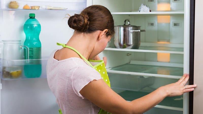 Запах тухлого мяса в холодильнике