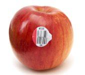 Наклейка с цифрами на яблоке