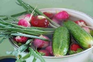 Вымачивание овощей от нитратов