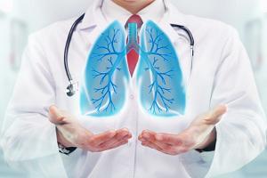 Здоровые лёгкие человека