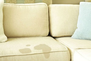 Жирное пятно на диване