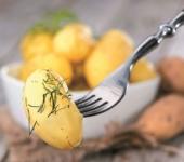 Чем заменить картофель при похудении?