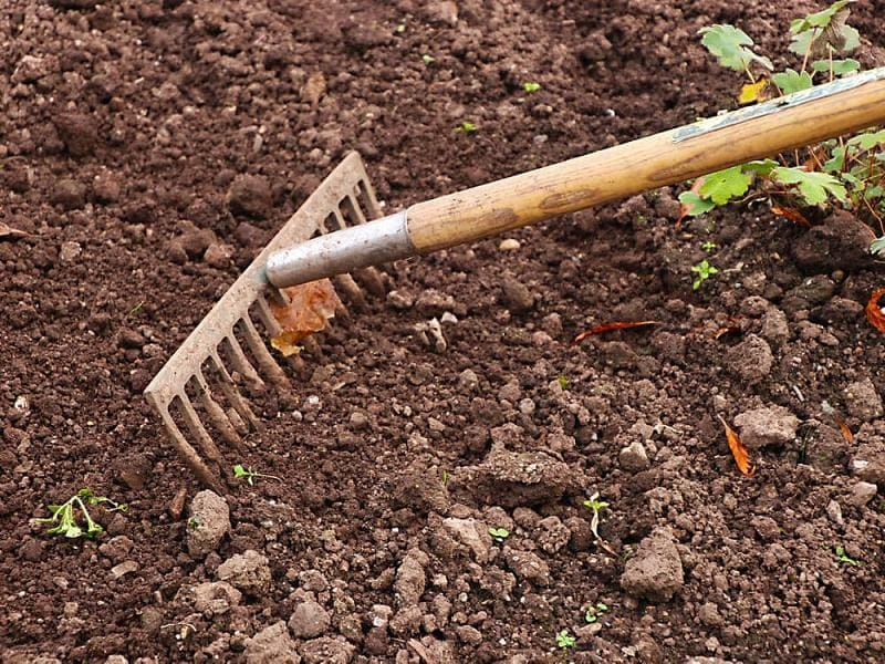 Как разрыхлить тяжелую почву на участке?