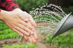 Моем руки после огорода