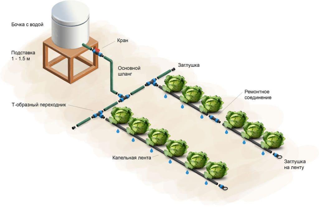 Система капельного полива для огорода из бочки