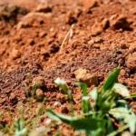 Глинистая почва на участке