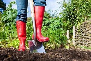 Женщина копает огород