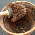 Очищаем цветочный горшок от белого налёта