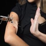 Почему кого-то комары кусают больше?