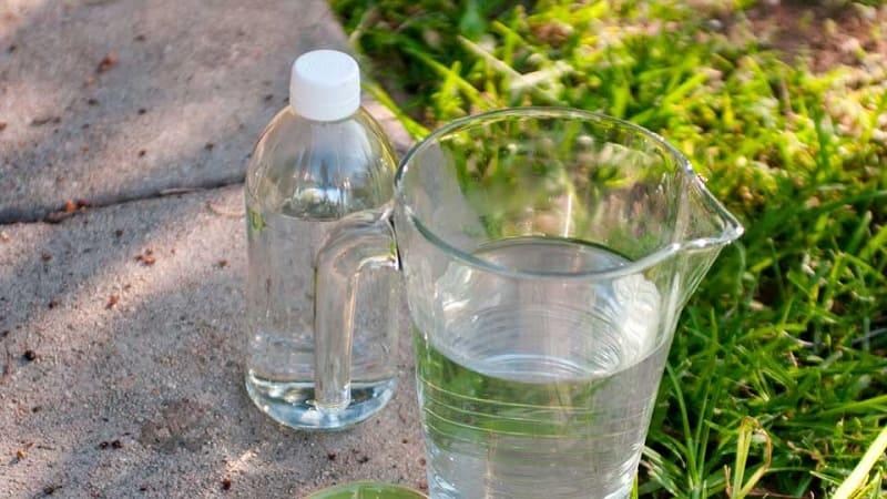 Использование уксуса в саду и огороде