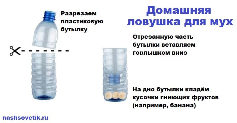 Ловушка для мух из пластиковой бутылки и банана