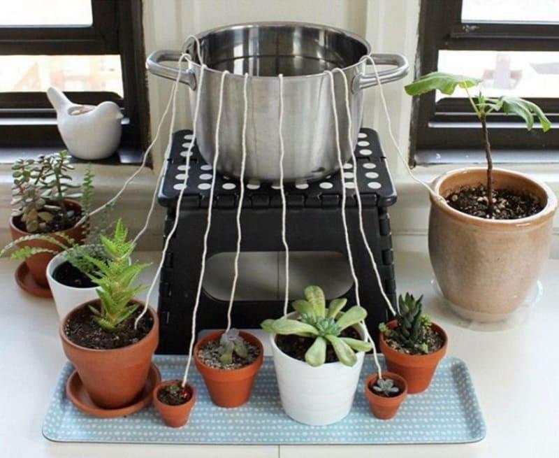 Система полива из верёвки и ёмкости с водой во время отпуска